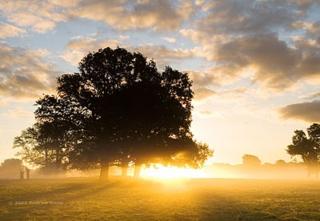 Sunrise:Andrew Dunn